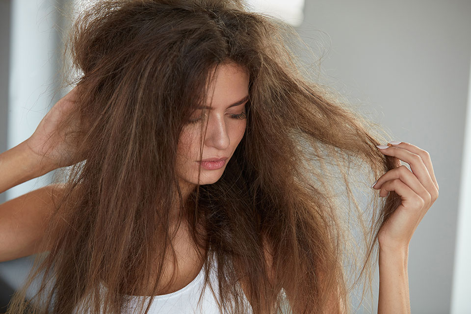Tips to Detangle Your Hair
